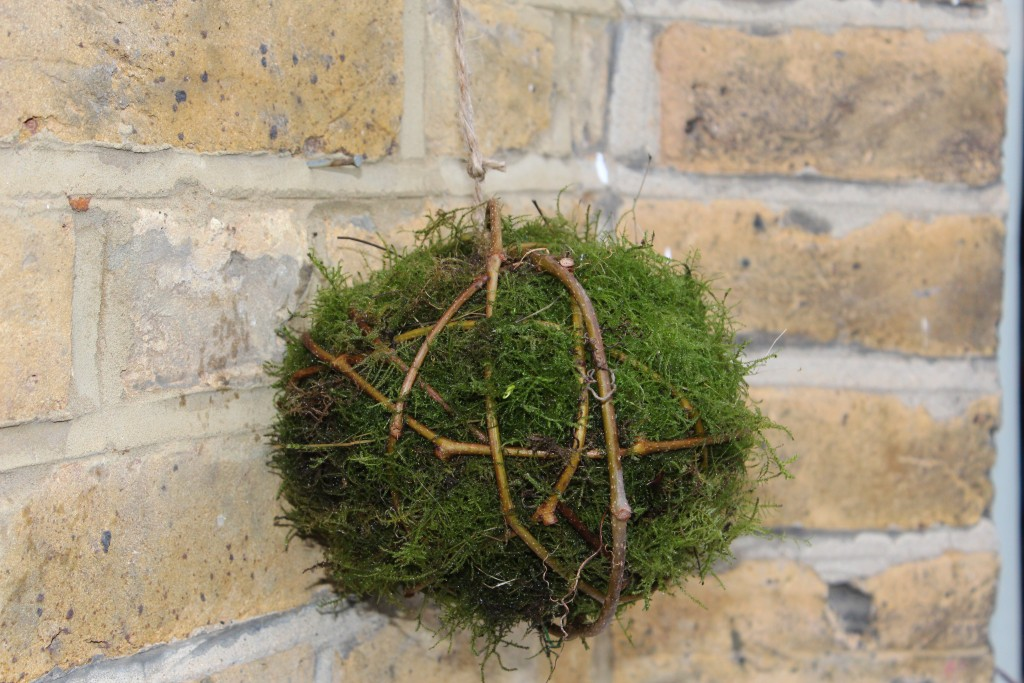 Moss Decoration